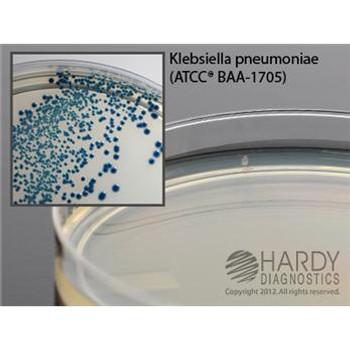 HardyCHROM CRE Agar, 18mL Fill, 15 x 100mm Plate (10/PK)