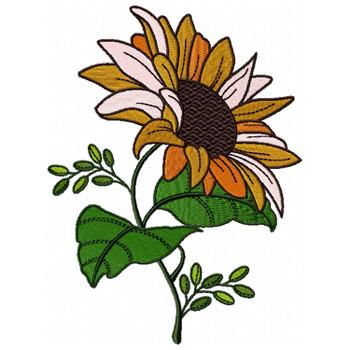 Detailed Sunflower #03
