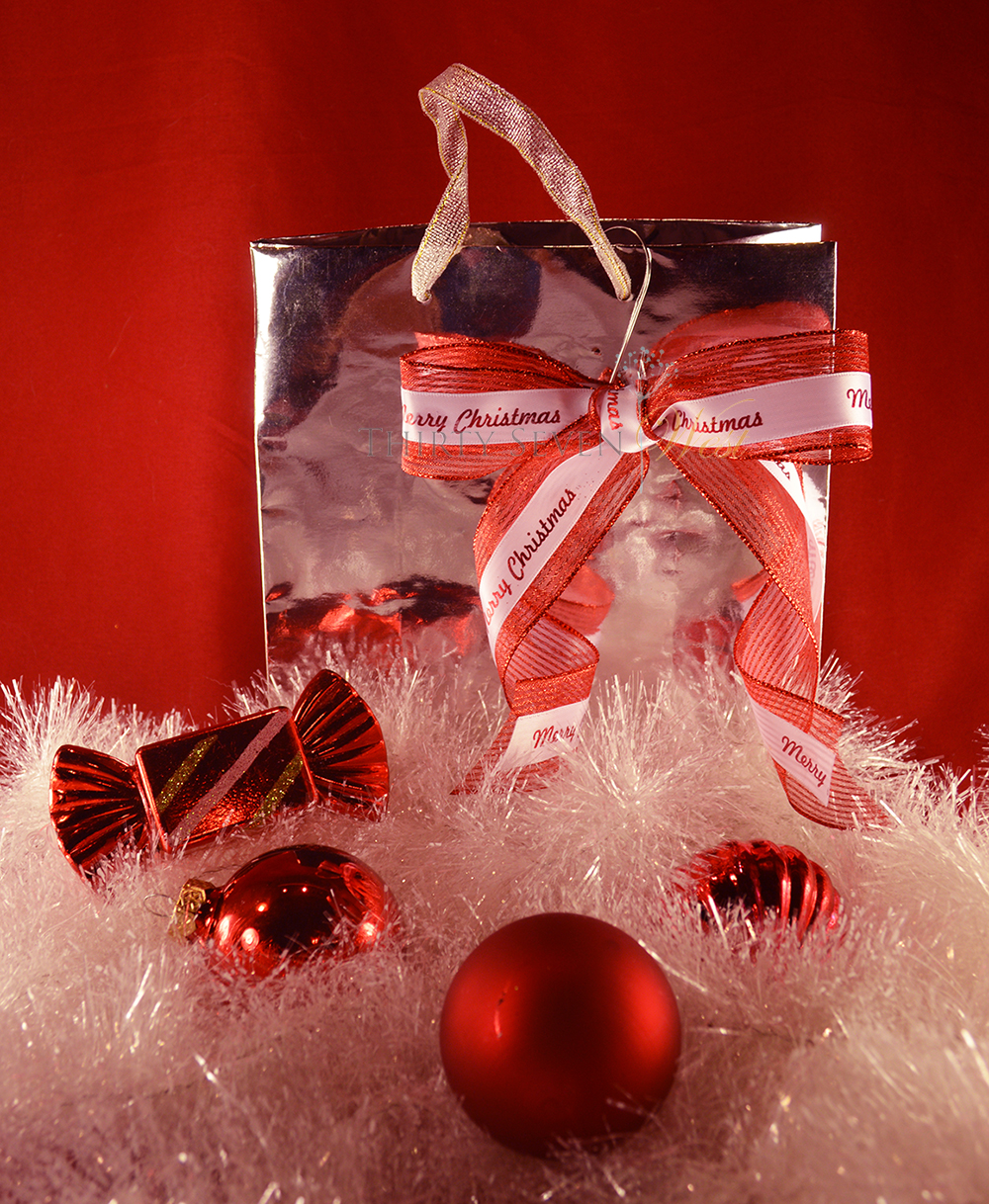 Personalized Printed Ribbon to reasonably and inexpensively brand your gift this year.