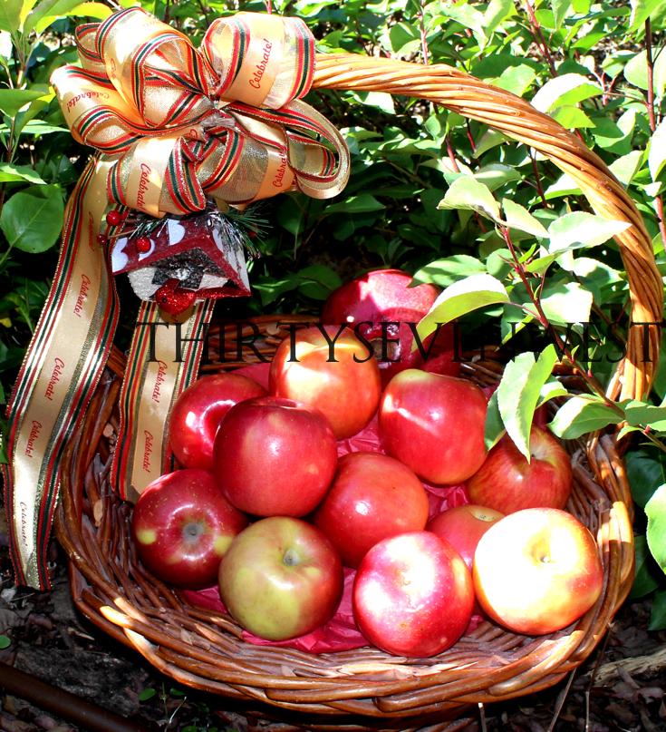 Customized Ribbon Gift Basket Ideas