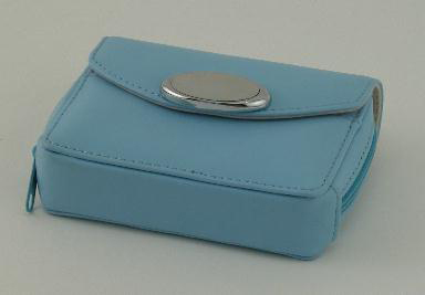 Baby Blue Zippered Card Case