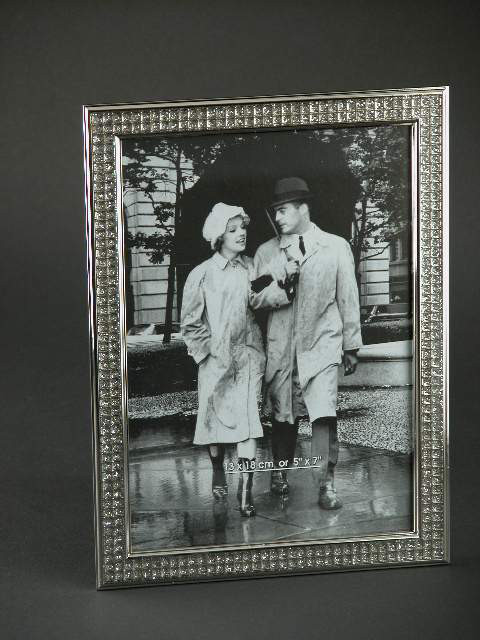 8x10 Nickel Plated All That Glitters Frame