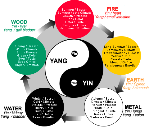 Yin Yang Theory in Chinese Medicine Explained