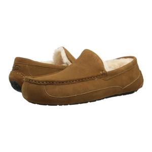 UGG Ascot Chestnut Mens Slippers | UGG 5775 Chestnut