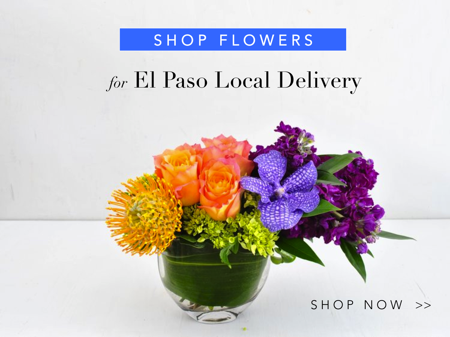 0-angies-floral-designs-d-sun-fl-o-wer-send-gifts-79912-handcrafted-gifts-same-day-delivery-roses-flowershop-el-paso-texas-79912-shop-online-flowers-florist-best-florist.png