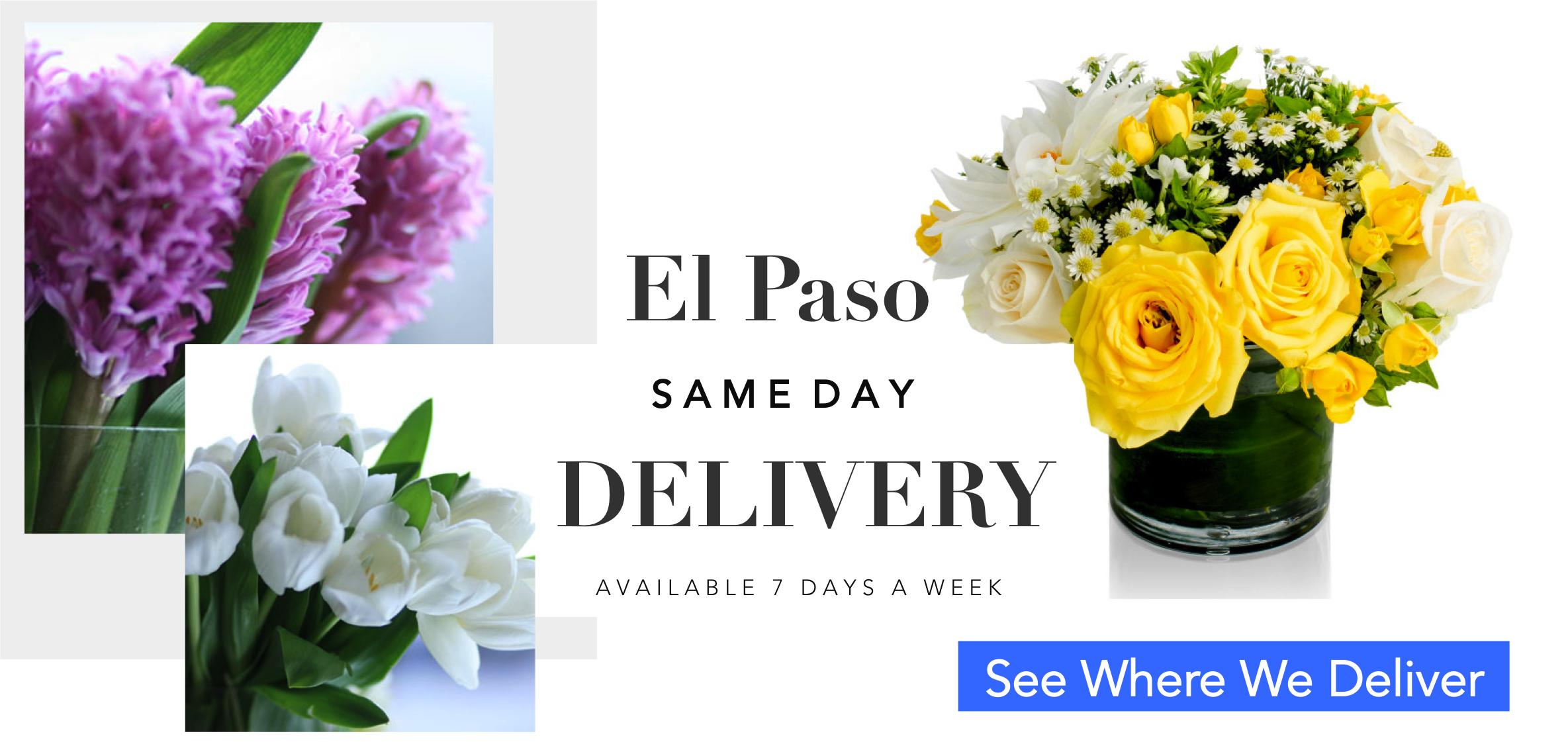 01-angies-1-angies-floral-designs-el-paso-delivery-flower-plants-el-paso-florist-flowershop-91579912-el-paso-florist-79912.jpg.png
