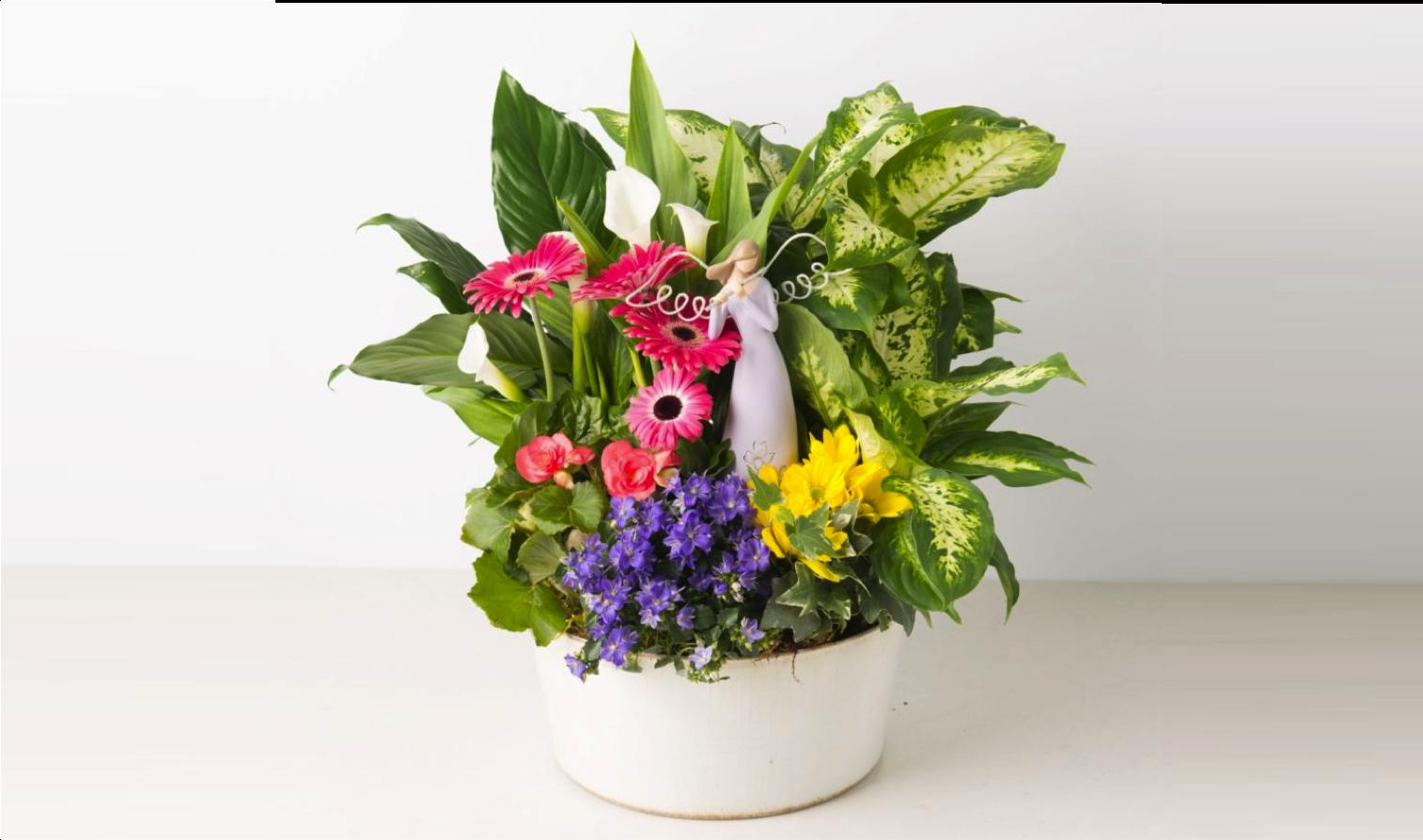 angie-s-floral-designs-el-paso-133-flowers-el-paso-florist-flowershop-79912.png