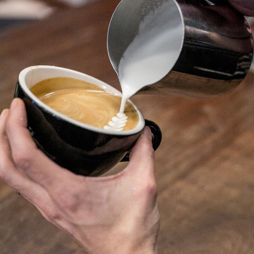 Milk Steaming/Latte Art for Beginners 7/24