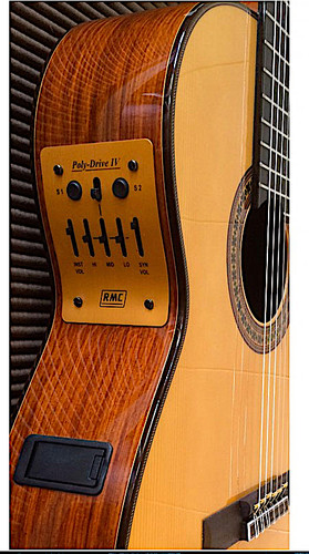 Rmc Acoustic Guitar Ensemble Ags14 6 Saddle Set And