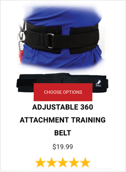 Buy Adjustable Belt