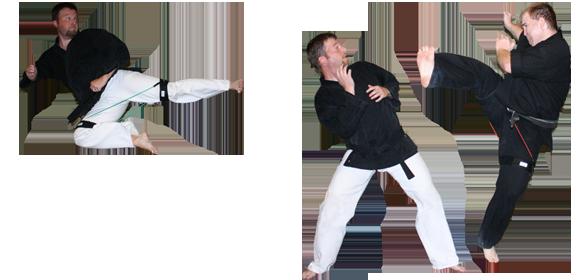 Martial Arts Kicks