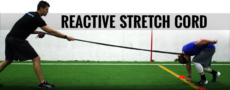 Buy Reactive Stretch Cord