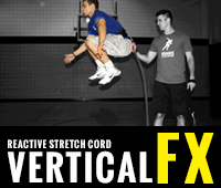 Vertical FX Training Program