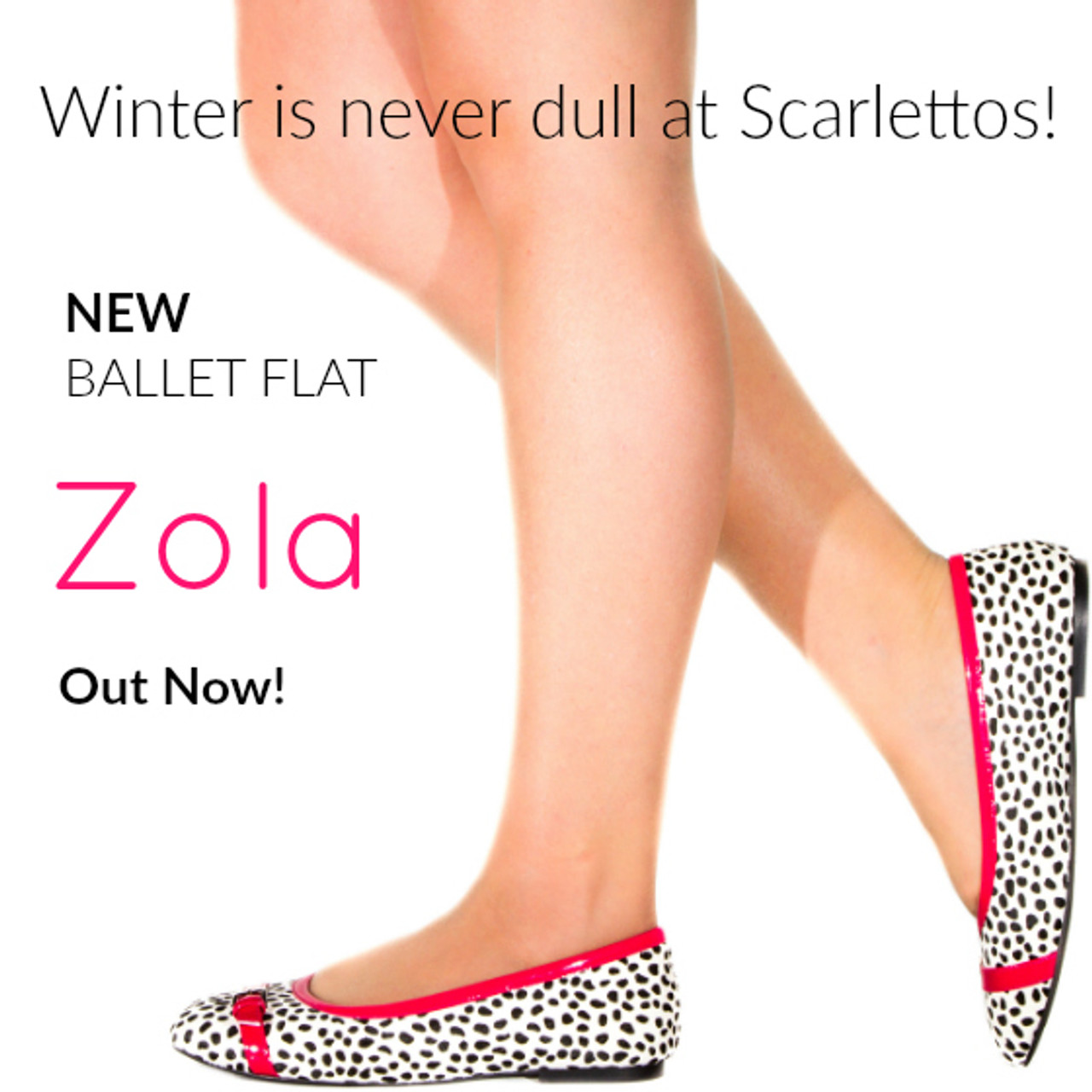 Winter Is Never Dull At Scarlettos! - New Flat Zola Is Here!