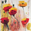 Poppies in Yellow by Daniel Campbell