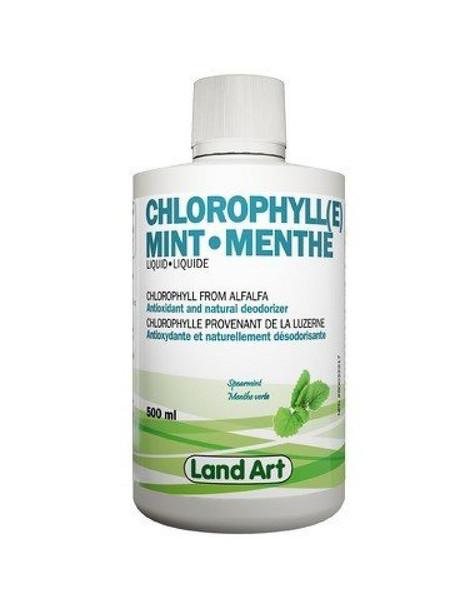 Land Art Chlorophyll (e) Mint Flavour, 500 ml