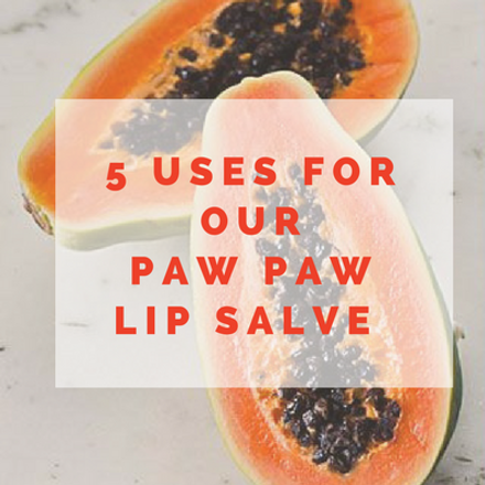 5 USES FOR OUR PAW PAW LIP SALVE!