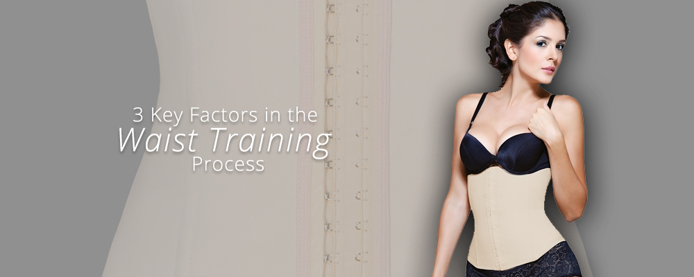 Key factors for waist training results