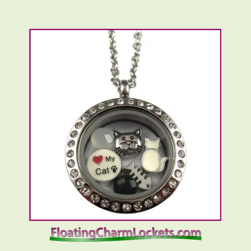 lover cat howdy locket lockets collections chic