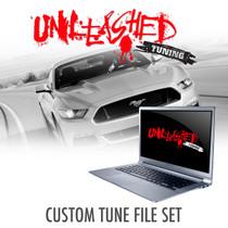 Mustang 5.0L Coyote Custom Tunes