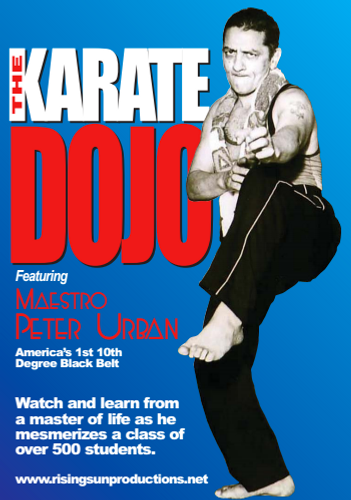 The Karate Dojo (Part #1 The Punch) dL M-0011