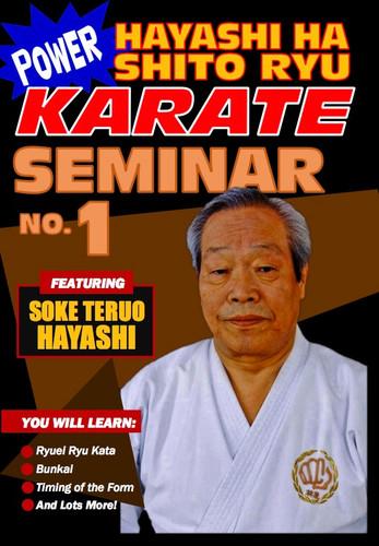 Power Karate Hayashi Ha Shito Ryu Seminar #2