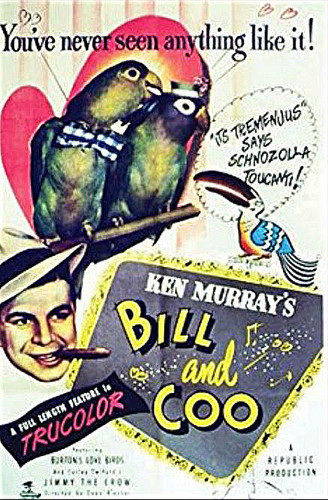 Bill and Coo (Download)