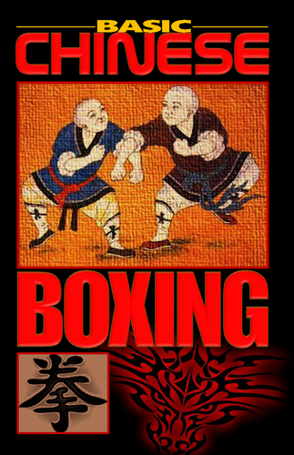 Basic Chinese Boxing