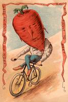 Beet Vegetable Rider Victorian Image Poster