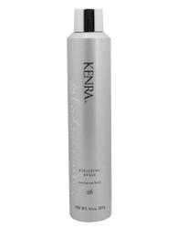 KENRA Platinum Finishing Spray Max Hold 26, 10 oz