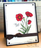 Poppies & Greetings Clear Stamp Set
