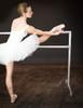 Custom Barres Aluminum Ballet Barres