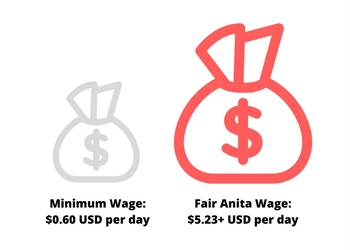 Fair Trade Wages Ethiopia | Fair Anita