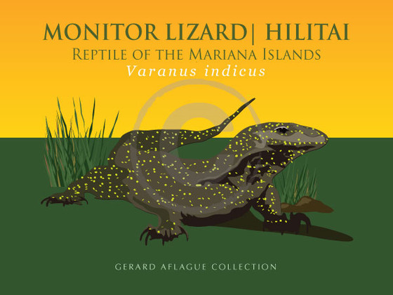 Guam Cnmi Gifts Amp Products Monitor Lizard Iguana