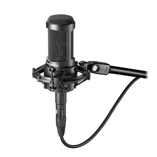 Audio-Technica AT2050 side-address microphone