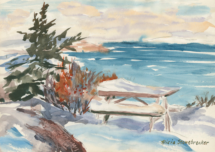 Winter Picnic, Reid State Park, Maine