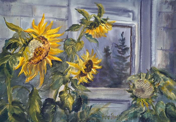 Sunflowers With Pine Tree Reflection