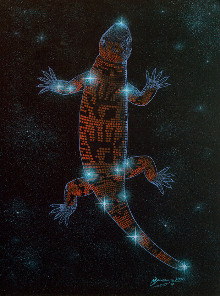 Straight Tail Lizard  - Healer and Protector
