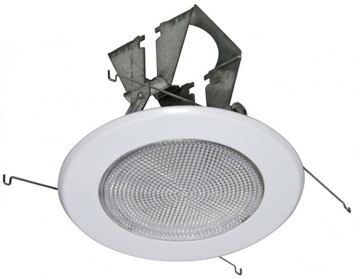 """(FL5) Fresnel Shower Trim for 5"""" Recessed Can"""