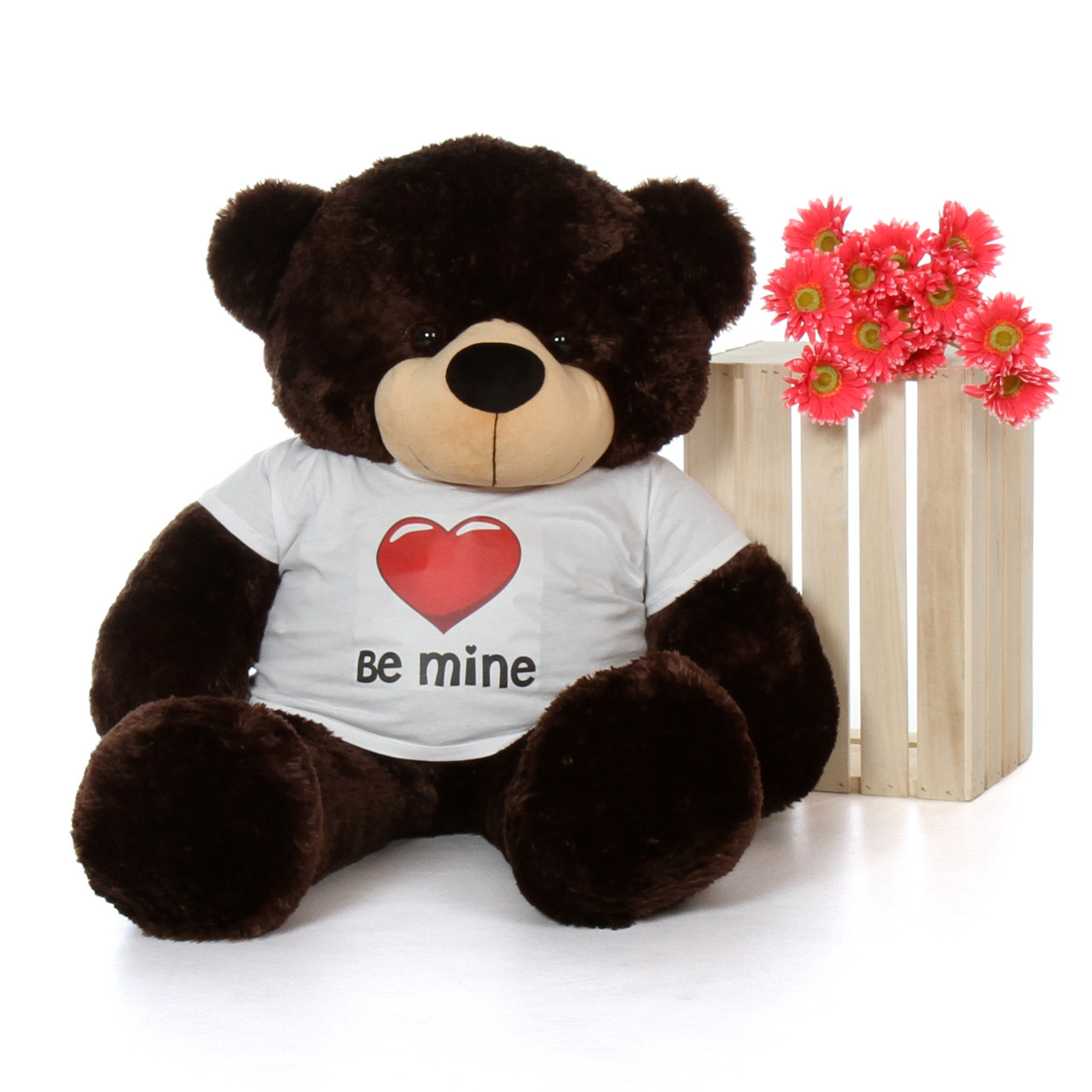 4ft Chocolate Brownie Cuddles Giant Teddy with a Be Mine Valentine's Day T-Shirt