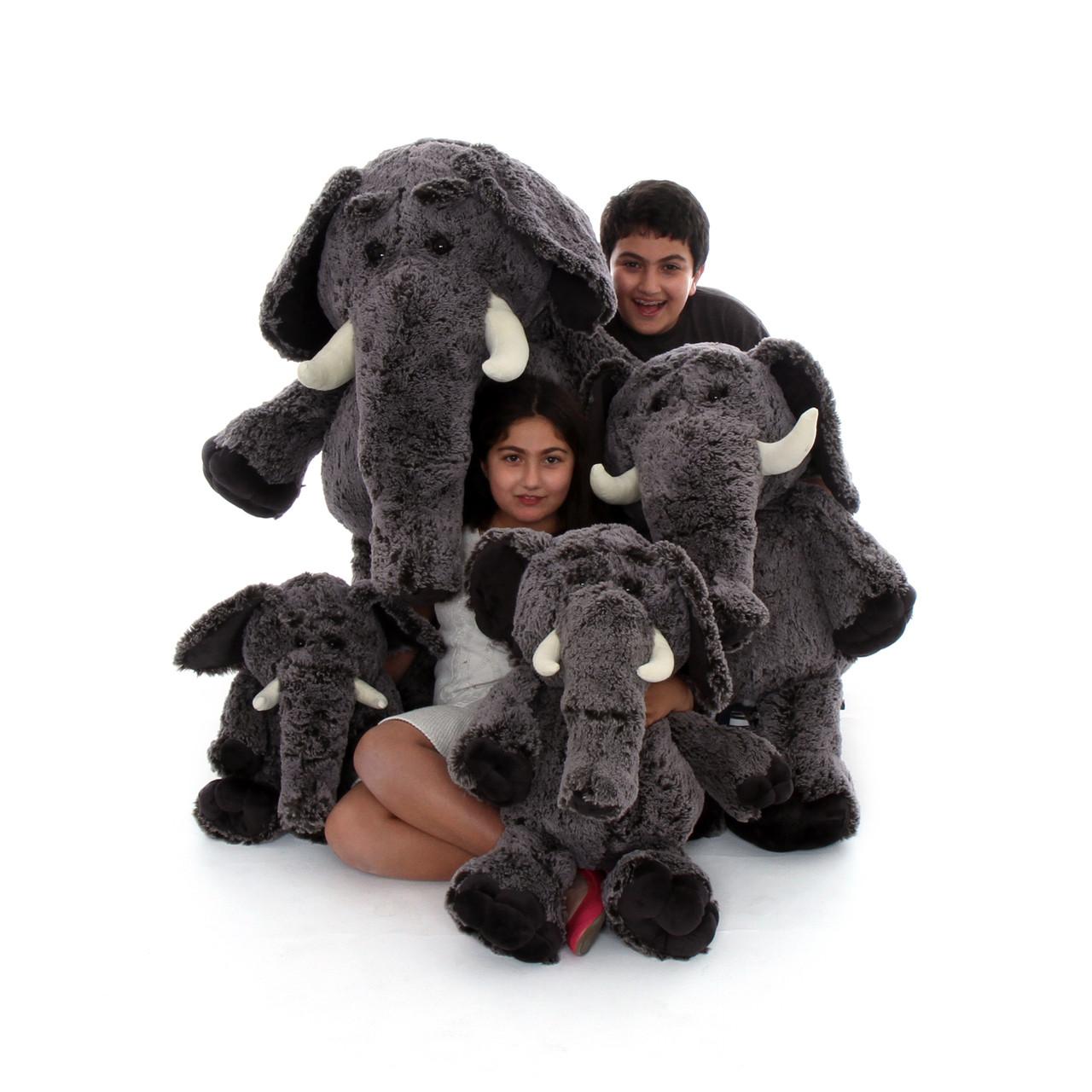 Elephants Family