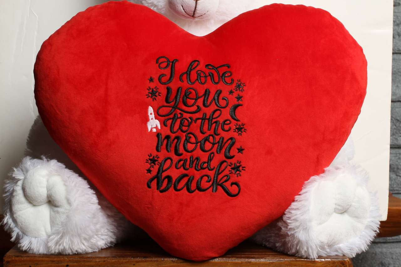I Love you to the moon and back best valentine's gift for girlfriend