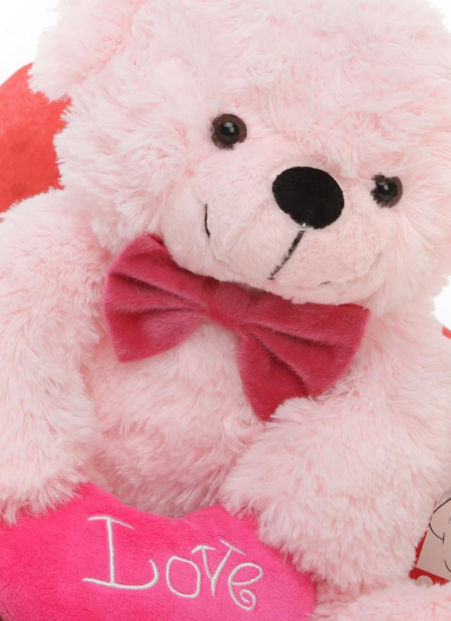 Hug Care Package Lady Cuddles Pink Teddy Bear