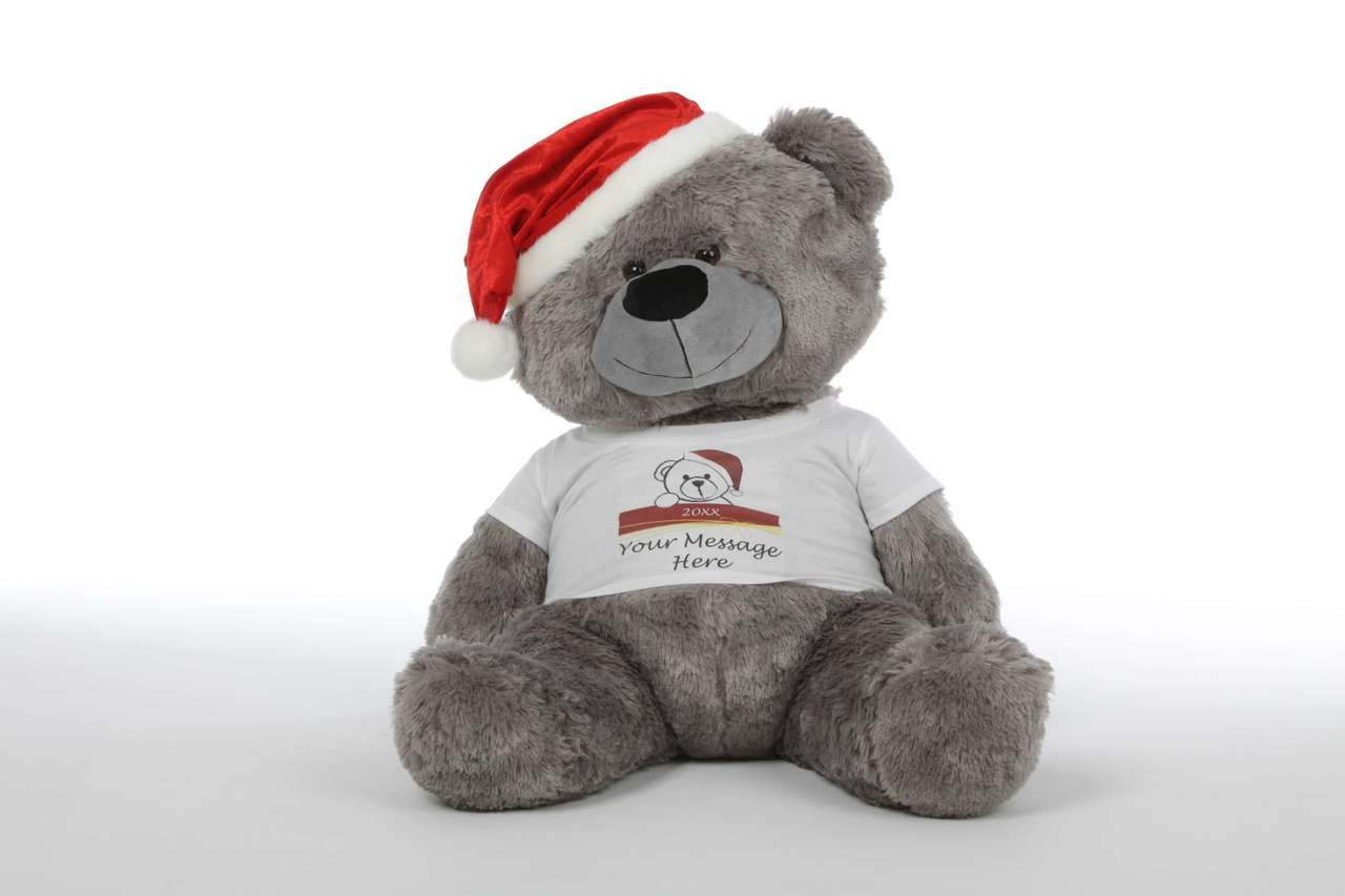Christmas Teddy Bear with Red Santa Hat