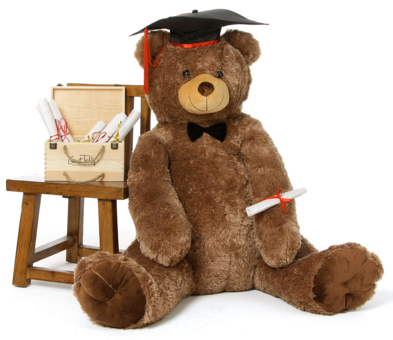 52in Life Size Graduation Teddy Bear Sweetie Tubs