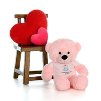 30in Pink Lady Cuddles in personalized blue teddy bear in bandage shirt