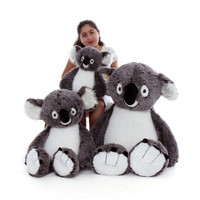 Giant Teddy Stuffed Koalas