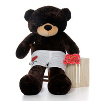 6ft Brownie Cuddles Chocolate Giant Teddy Bear in Red Heart Your Message Here Boxers