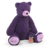 Purple Passion Teddy Bears