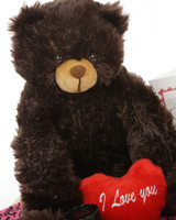 Gimme Some Lovin Bear Hug Care Package Baby Heart Tubs chocolate brown teddy bear 18in
